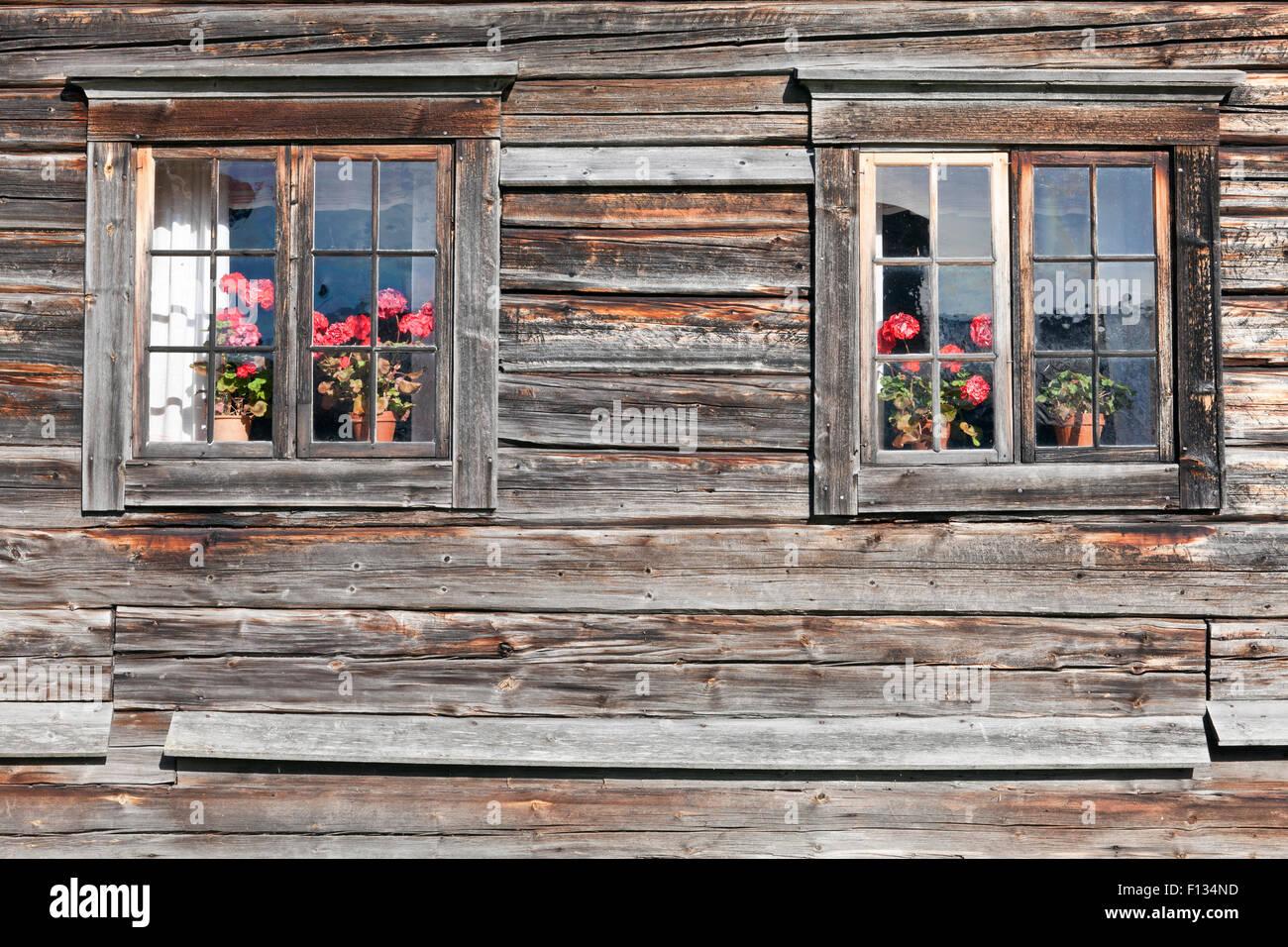 Hölzerne Wand und Fenster in einem alten Gebäude. Blume, Blumentopf ...