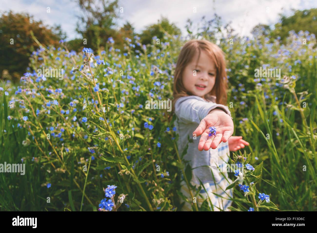 Mädchen hält eine Blume in der Handfläche von ihrer hand Stockbild