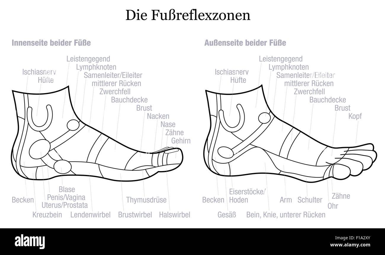 Niedlich Lymphknoten Diagramm Ideen - Menschliche Anatomie Bilder ...