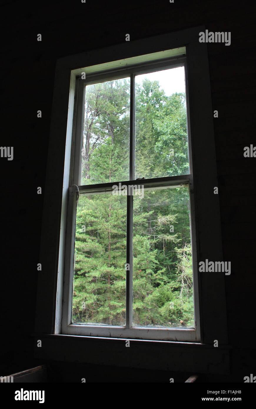 blick aus dem fenster in einen wald stockfoto bild 86900612 alamy. Black Bedroom Furniture Sets. Home Design Ideas
