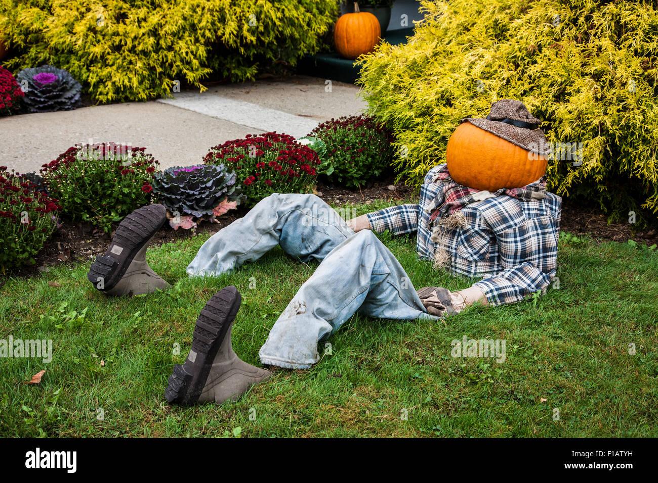 Halloween Herbst Garten Display Eines Kurbis Kopf Mann Sitzt In Einem Gartenbett In Vermont Usa Herbst New England Herbst Farben Gartenarbeit Humor Amerikaner Stockfotografie Alamy