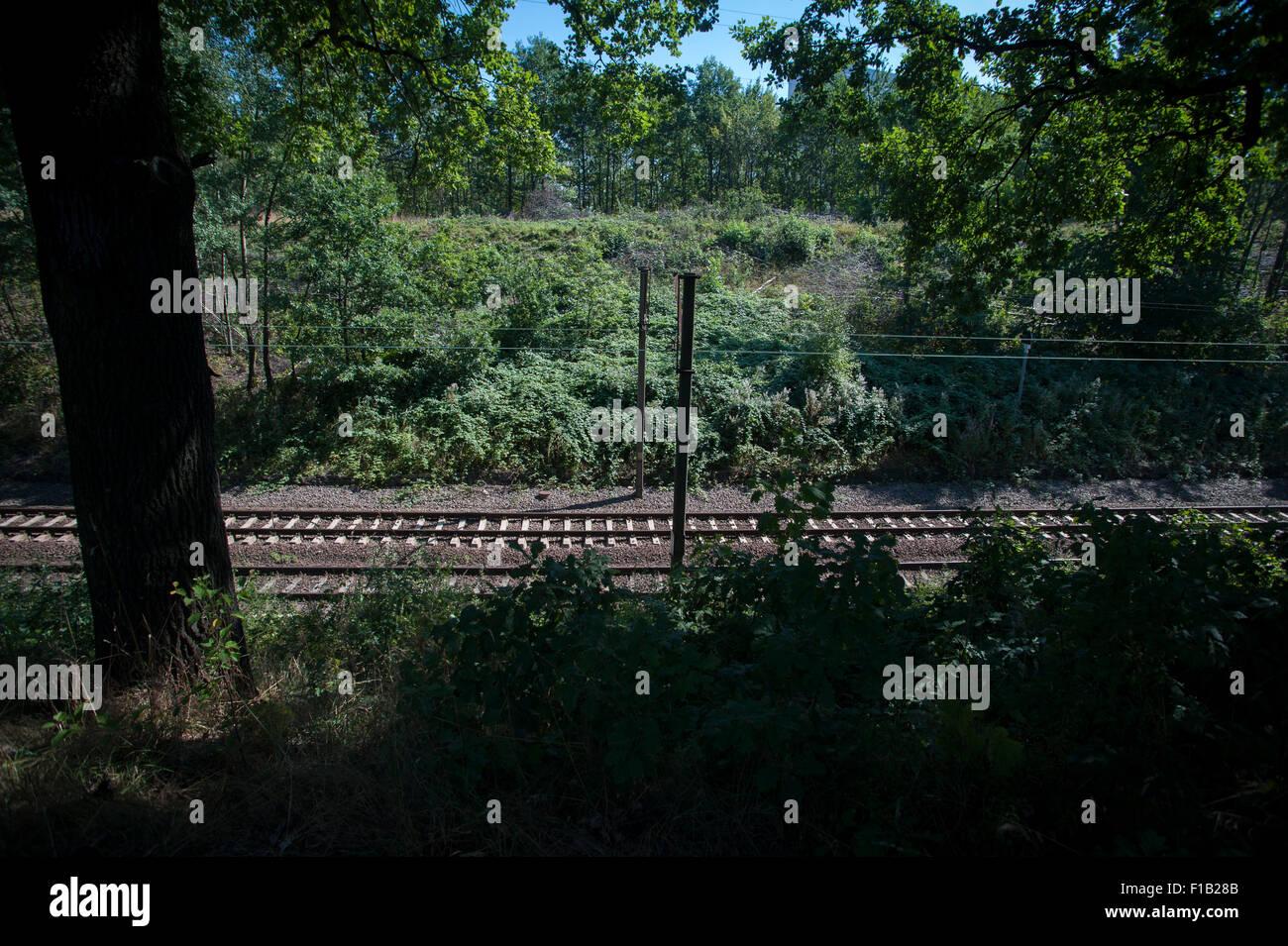 Die Website Der Fehlenden Nazi Gold Zug In Walbrzych Polen