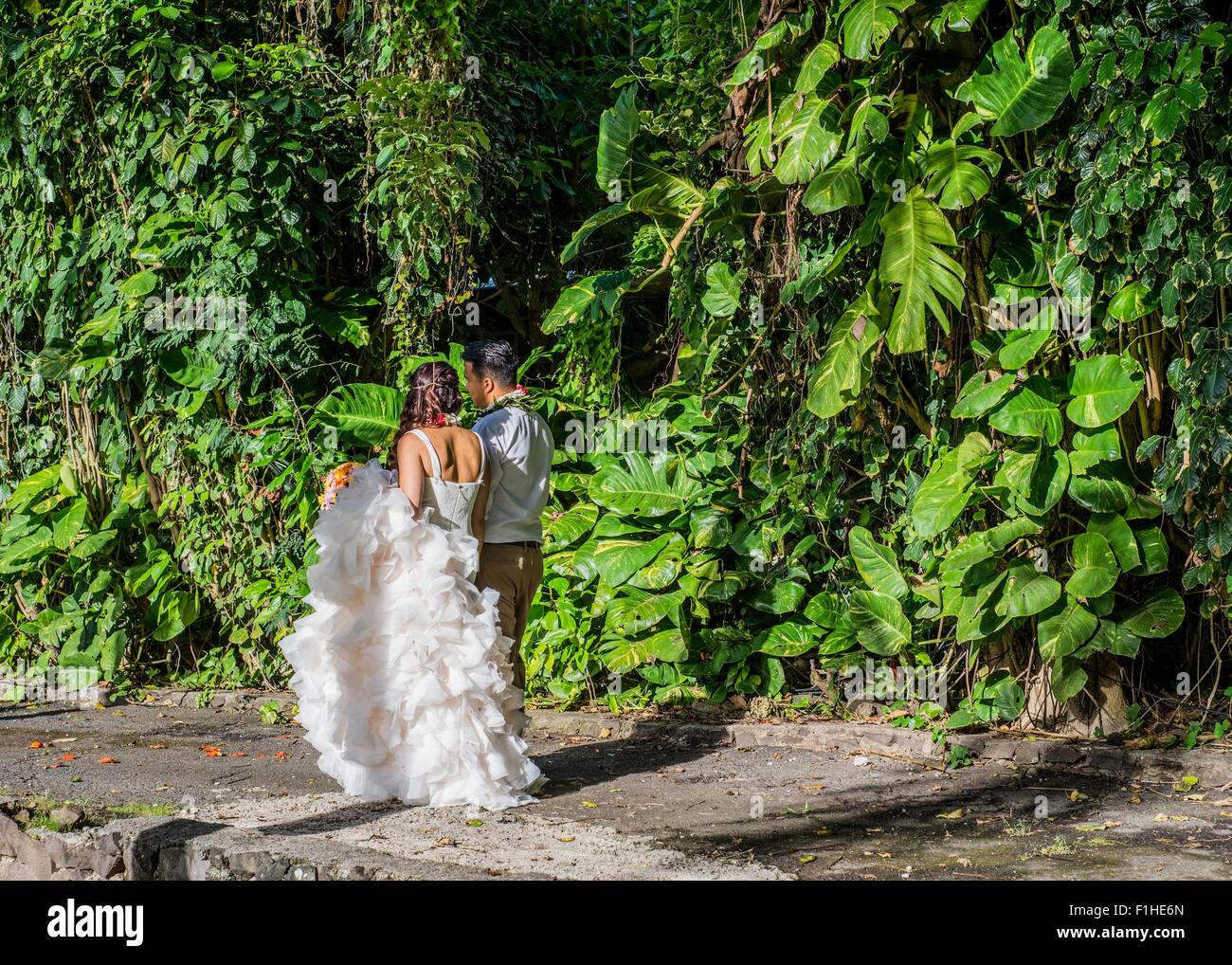 Braut und Bräutigam einen Spaziergang im Garten bei Hawaiian Wedding, Kaaawa, Oahu, Hawaii, USA Stockbild