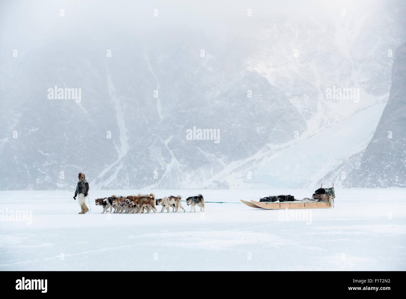 Inuit-Jäger zu Fuß sein Hundeteam auf das Meereis in den Polargebieten ein Schnee-Sturm, Grönland, Stockbild