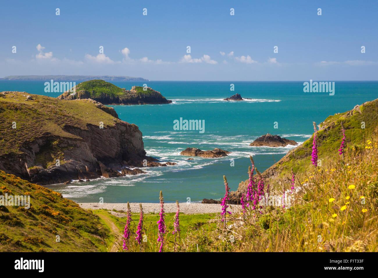 Solva, Pembrokeshire, Wales, Vereinigtes Königreich, Europa Stockbild