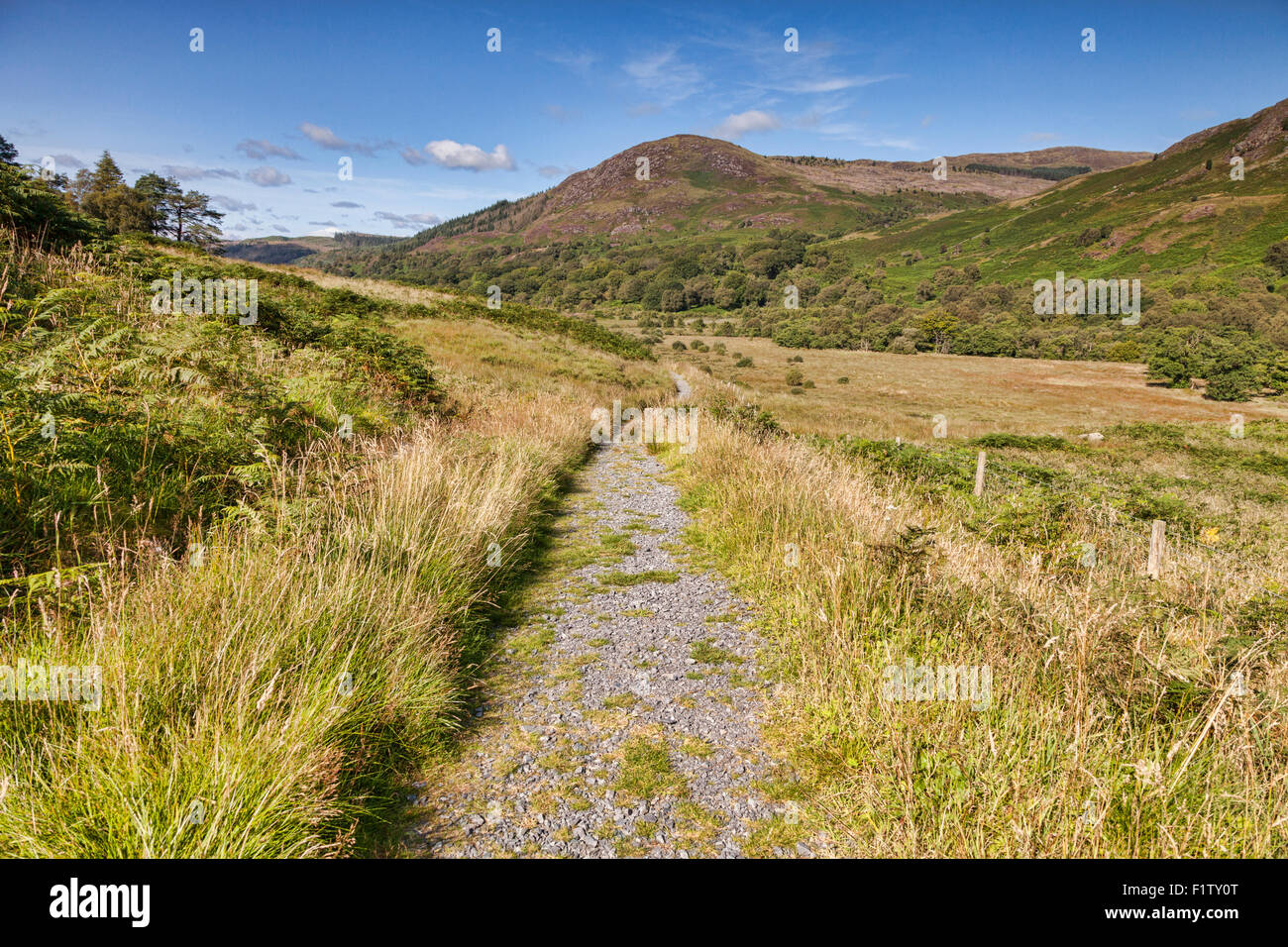 Die Southern Uplands Weise wie es durchläuft die Galloway Hills in Glentrool, Dumfries and Galloway, Schottland, Stockbild