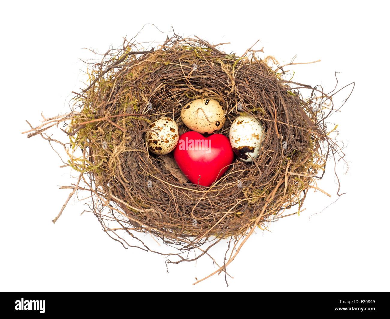 Nest Mit 3 Eiern Und Einem Herz Stockbild