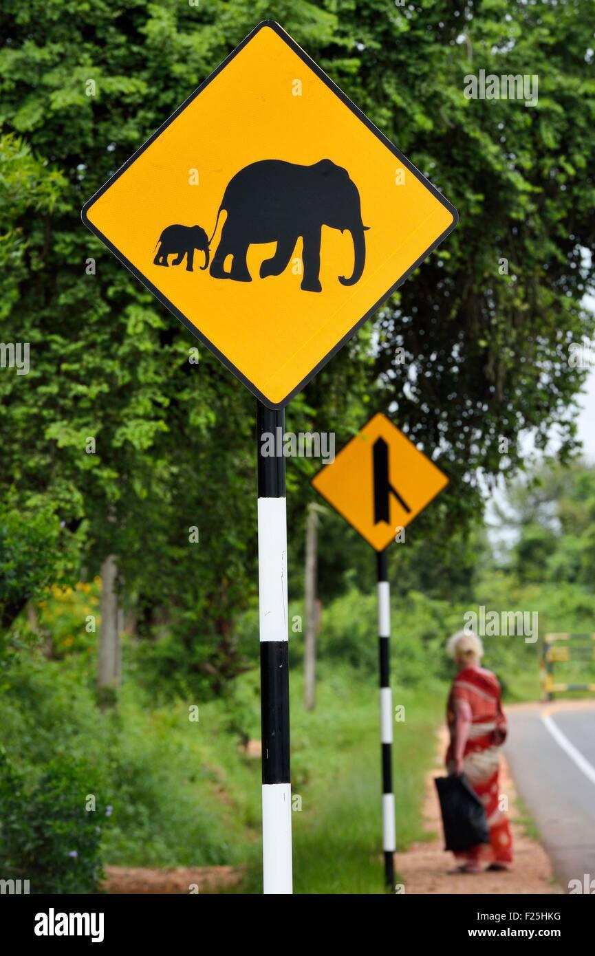 Sri Lanka, Eastern Province, Trincomalee, Verkehrszeichen, die auf das Vorhandensein von Elefanten Stockbild