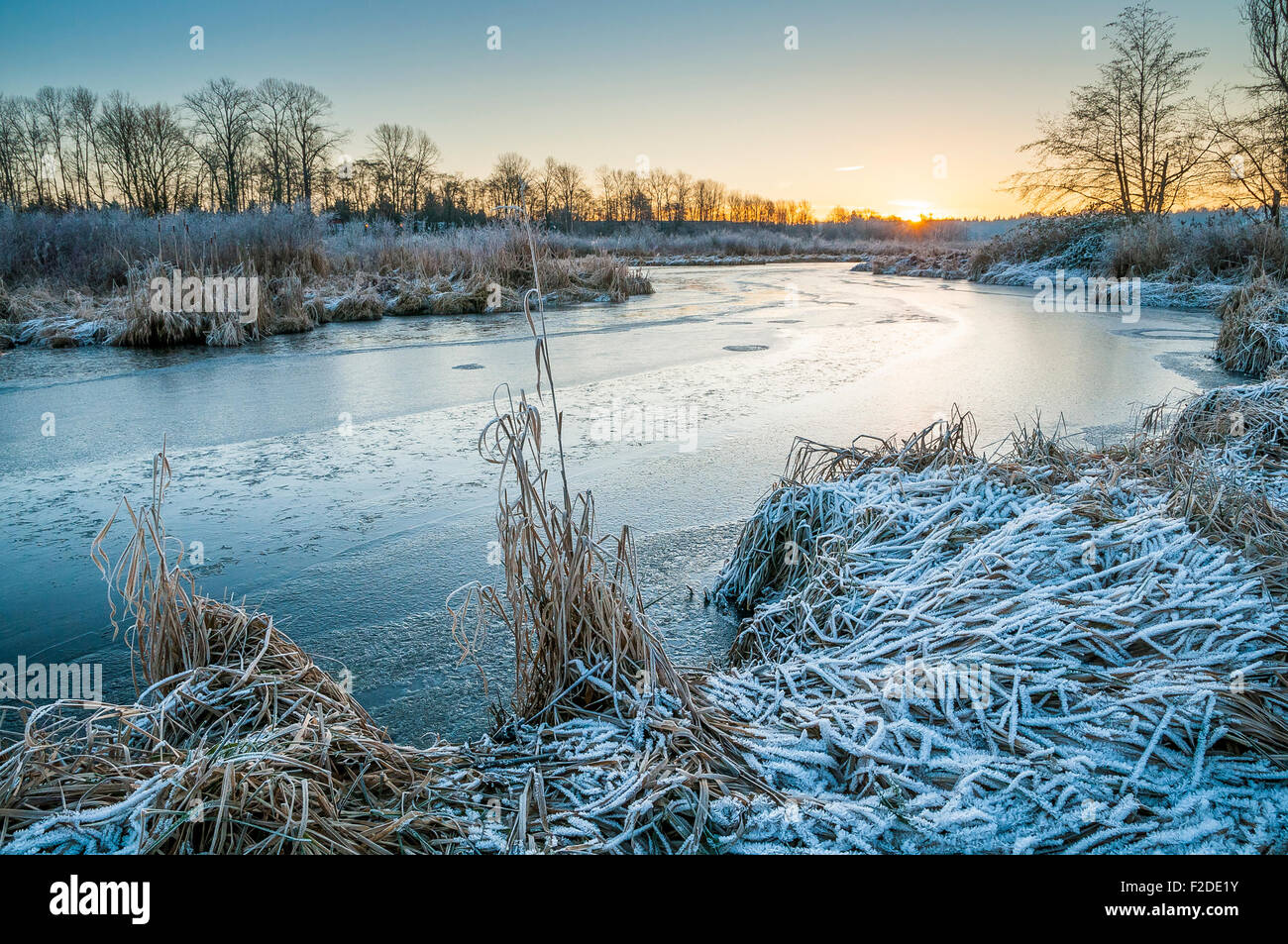 Winter Sunrise, Still Creek, Burnaby Lake Regionalpark, Burnaby, British Columbia, Kanada Stockbild