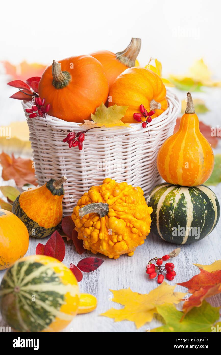herbst halloween deko k rbisse in korb stockfoto bild 87724601 alamy. Black Bedroom Furniture Sets. Home Design Ideas