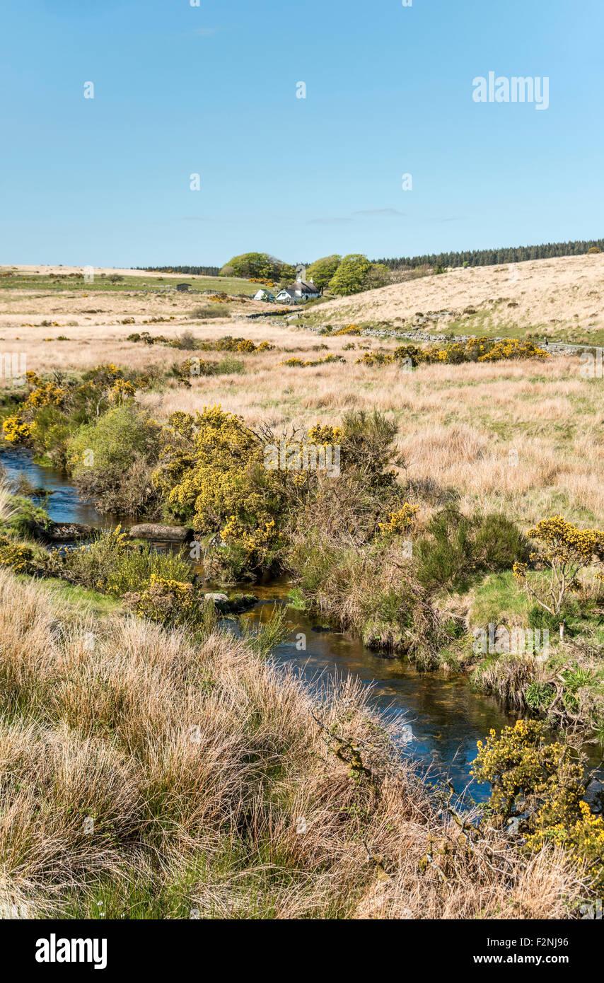 Bauer sucht Gäste in einer Landschaft im Nationalpark Dartmoor, Devon, England, UK   Renovierungen Im Dartmoor Stockbild