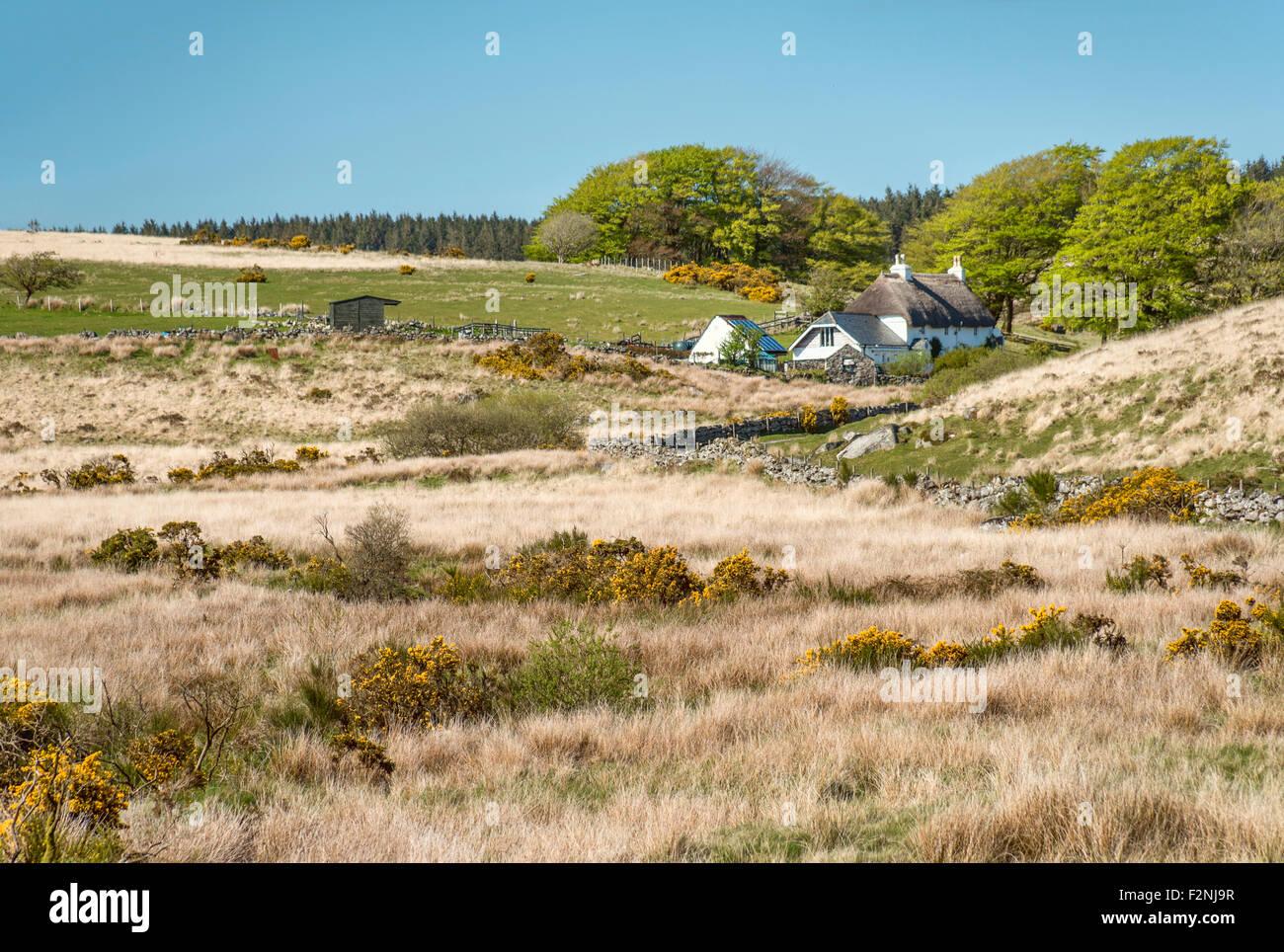 Bauer sucht Gäste in einer Landschaft im Nationalpark Dartmoor, Devon, England, UK | Renovierungen Im Dartmoor Stockbild