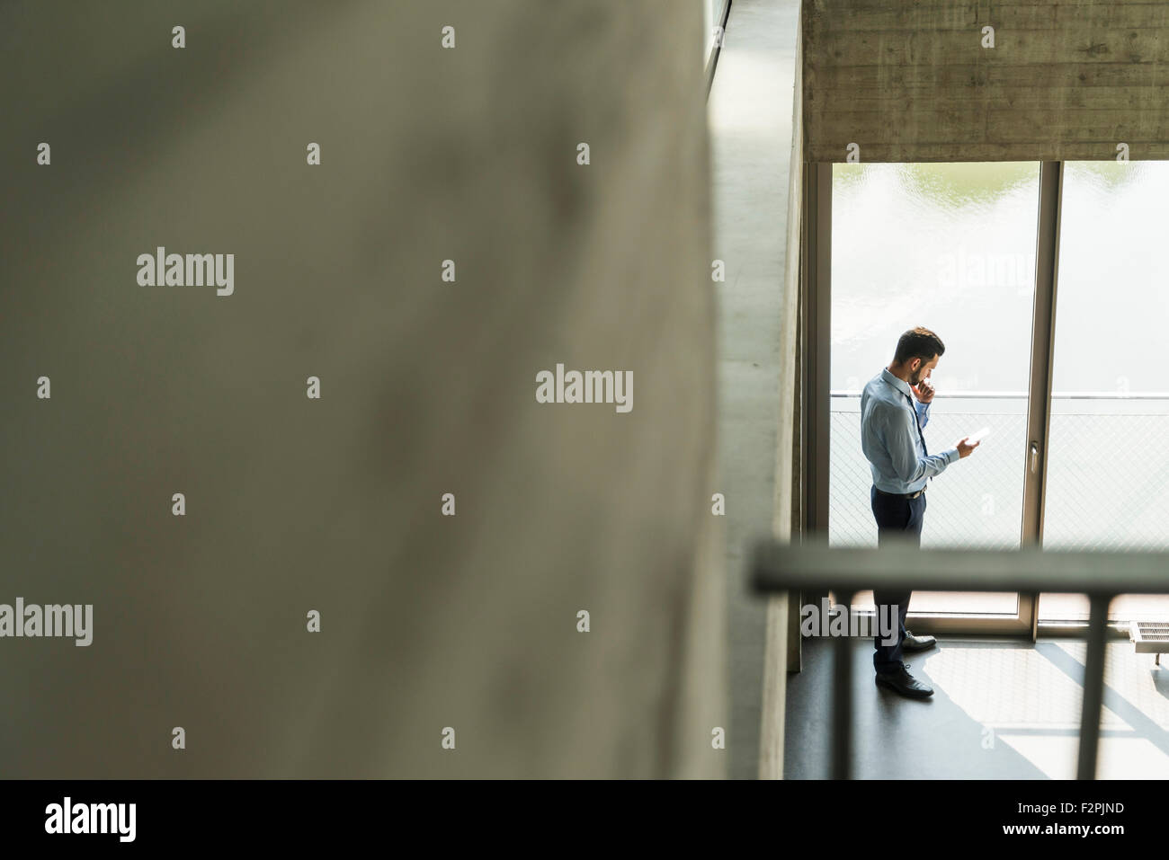Junge Unternehmer auf der Suche Handy am Fenster Stockbild