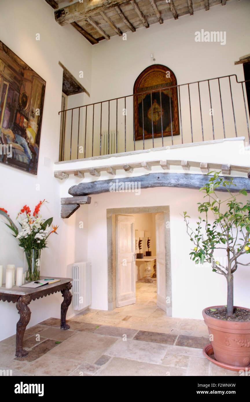 Große Terrakotta-Topf mit einem Zitrus Baum in Halle im ...