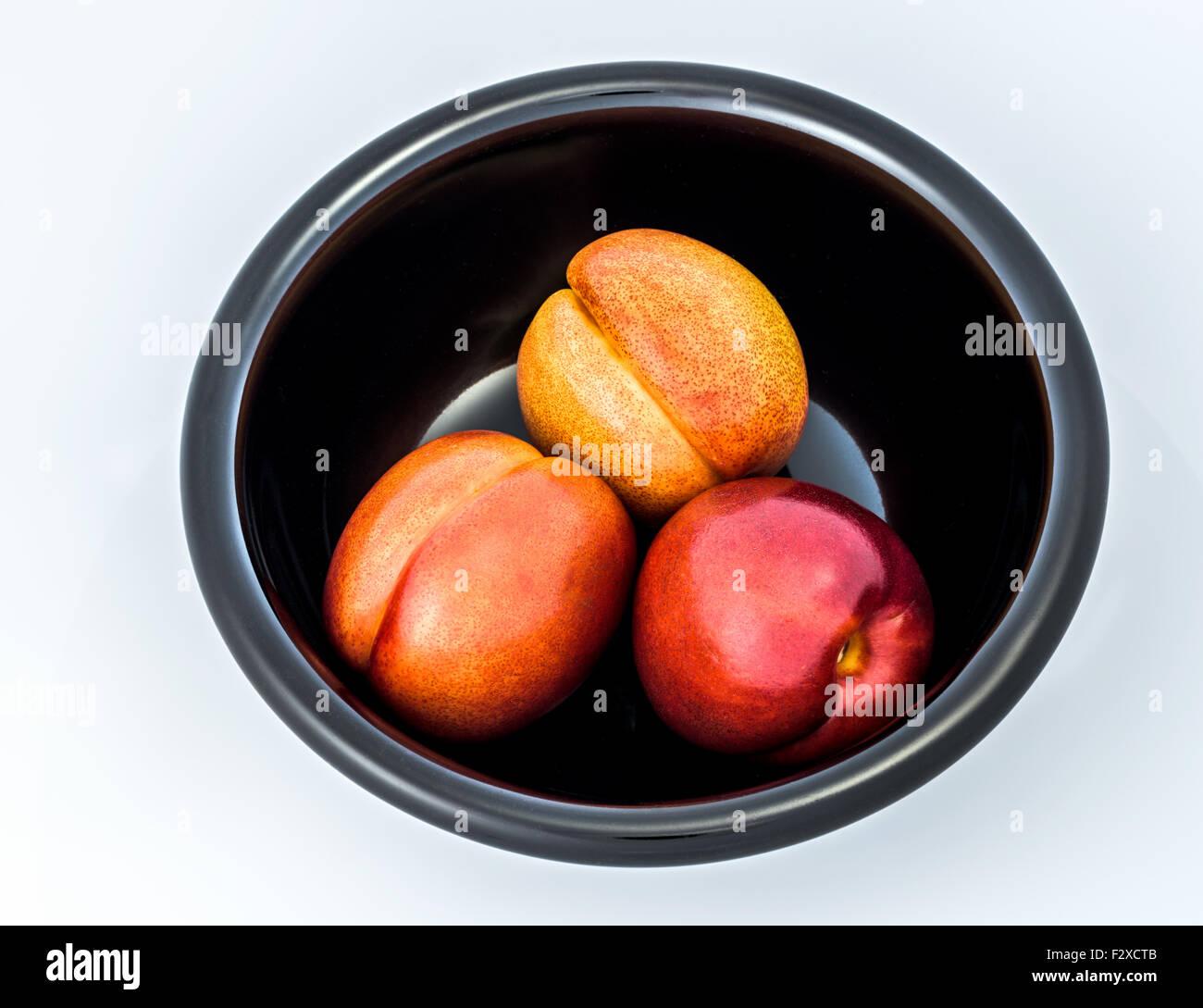 3 drei Nektarinen schwarze Schale, weißer Hintergrund, ausgeschnitten, rot-gelb-schwarz, Obst schön süß, Stockbild