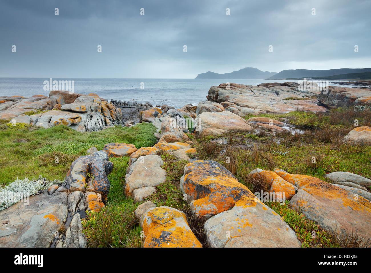 das Kap der guten Hoffnung am schwarzen Felsen, Cape Point, Südafrika Stockbild