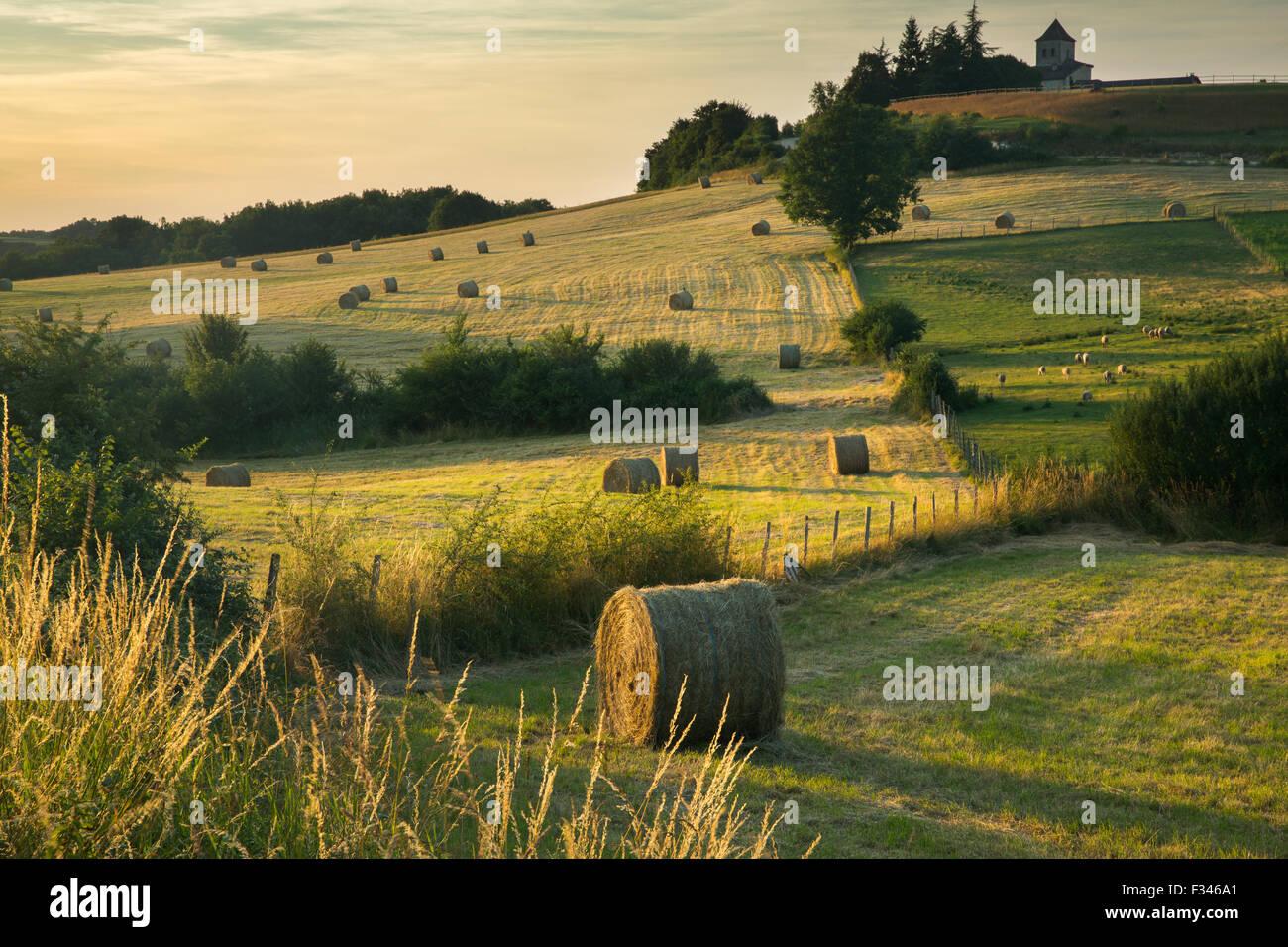 Heuballen in den Feldern in der Nähe von Beaumont du Périgord, Pays de Bergerac, Dordogne, Aquitaine, Stockbild