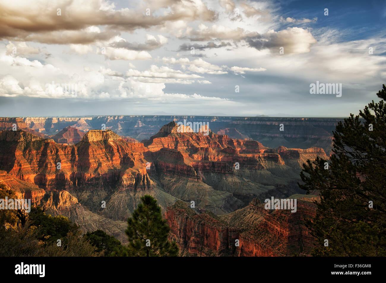Sommer Wolken Abend Sturm über die drei Tempel und der North Rim von Arizona Grand Canyon National Park. Stockbild