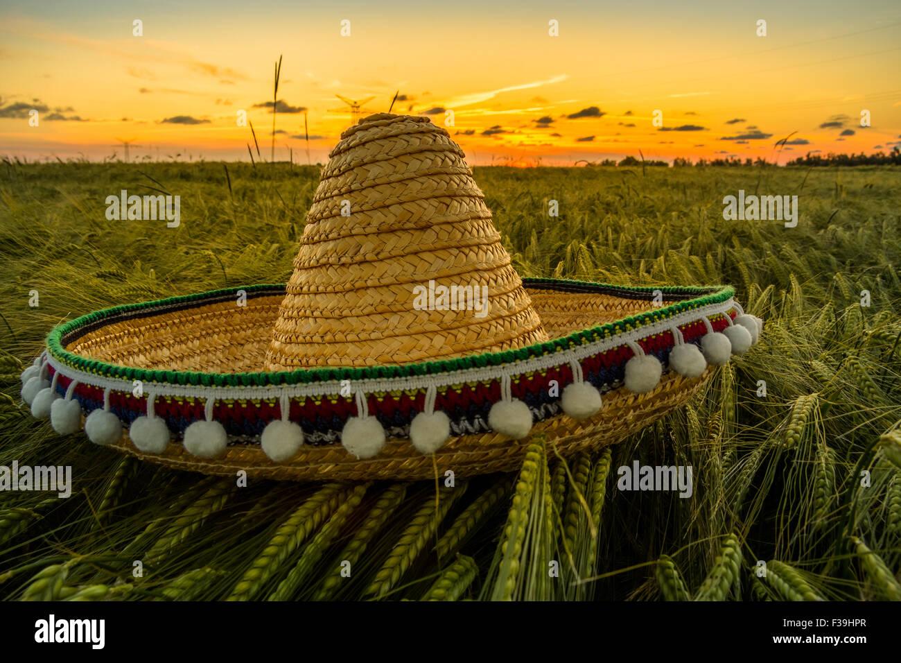 Sombrero-Hut an ein Gerstenfeld bei Sonnenuntergang Stockbild