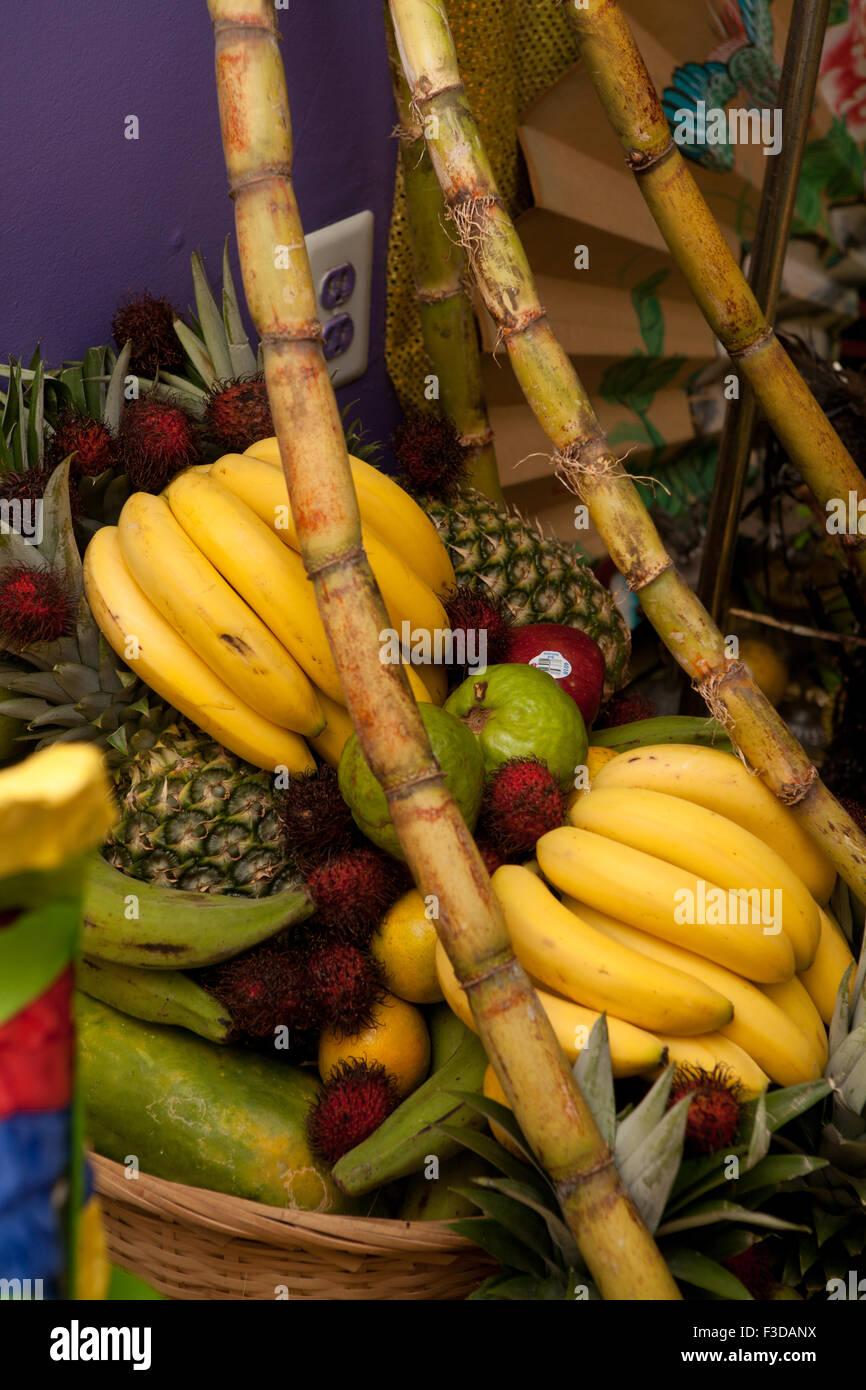 Orula Thorne Grün Gelbe Bananen Ananas Guave Zuckerrohr Stockfoto