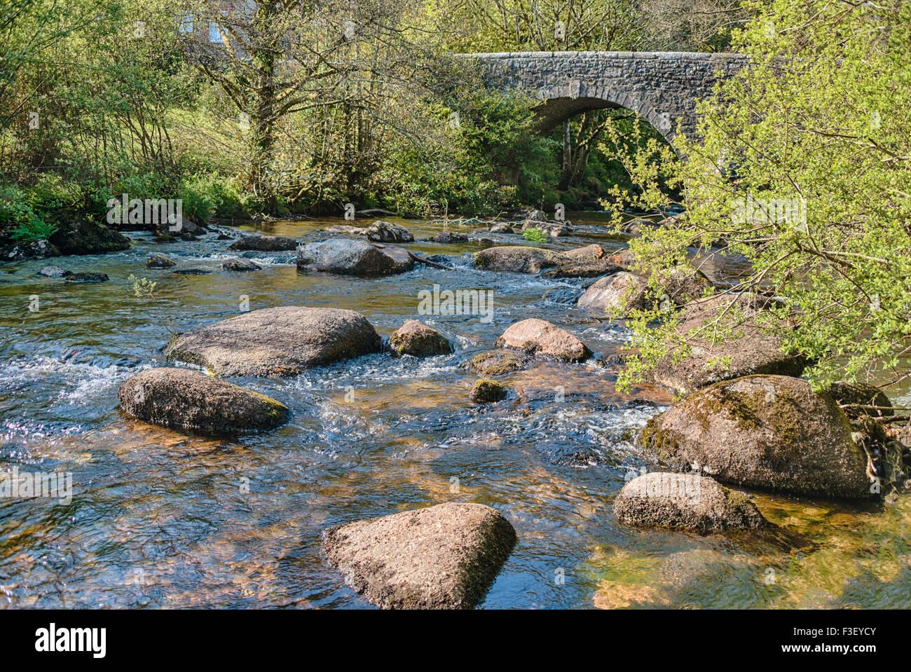 Cherry Brook River an der Dartmoor National Park, Devon, England, UK Stockbild