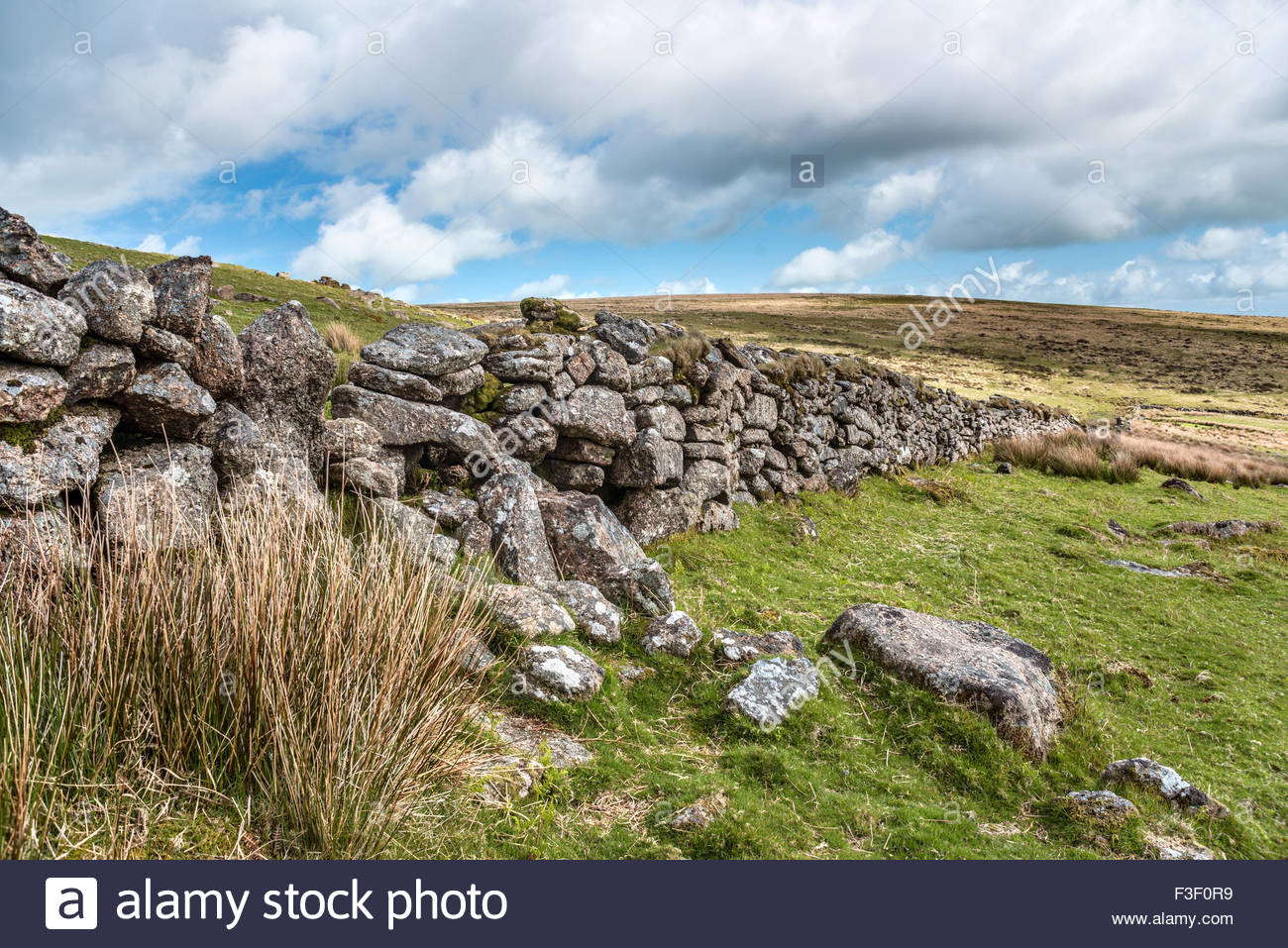 Trockenen Steinmauer an der Dartmoor National Park, Devon, England, UK | Landschaft Im Nationalpark Dartmoor, Devon, Stockbild