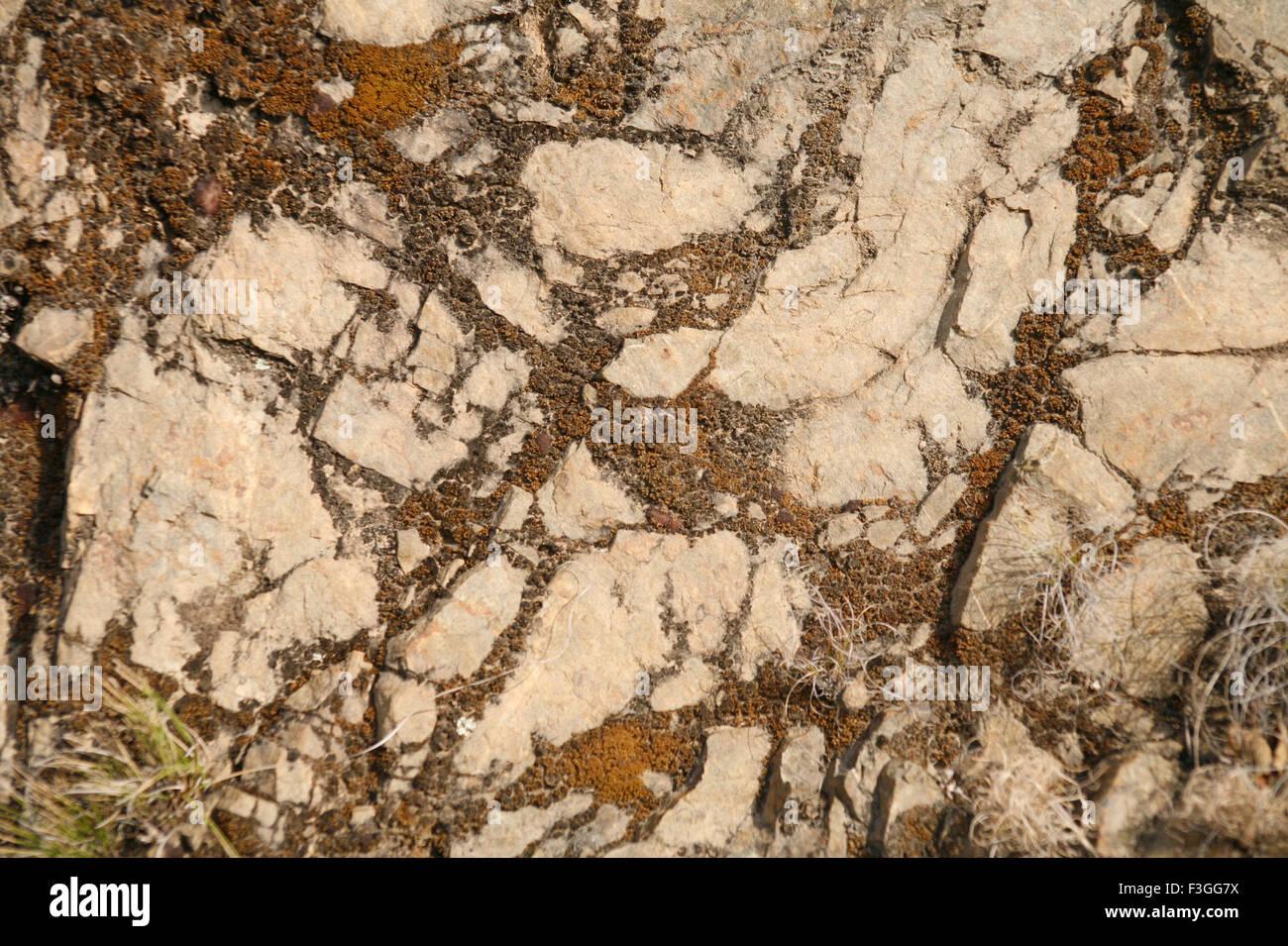 Abstrakte visuelle Verwirrung Stein; Himalaya; Nagthat; Uttaranchal; Indien Stockbild