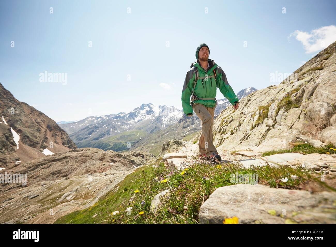 Junge männliche Wanderer Wandern Val Senales Glacier, Val Senales, Südtirol, Italien Stockbild