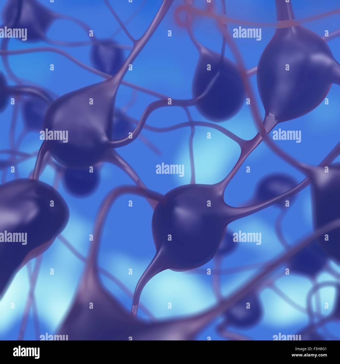 3D Darstellung der Nervenzellen im Gehirn Stockbild