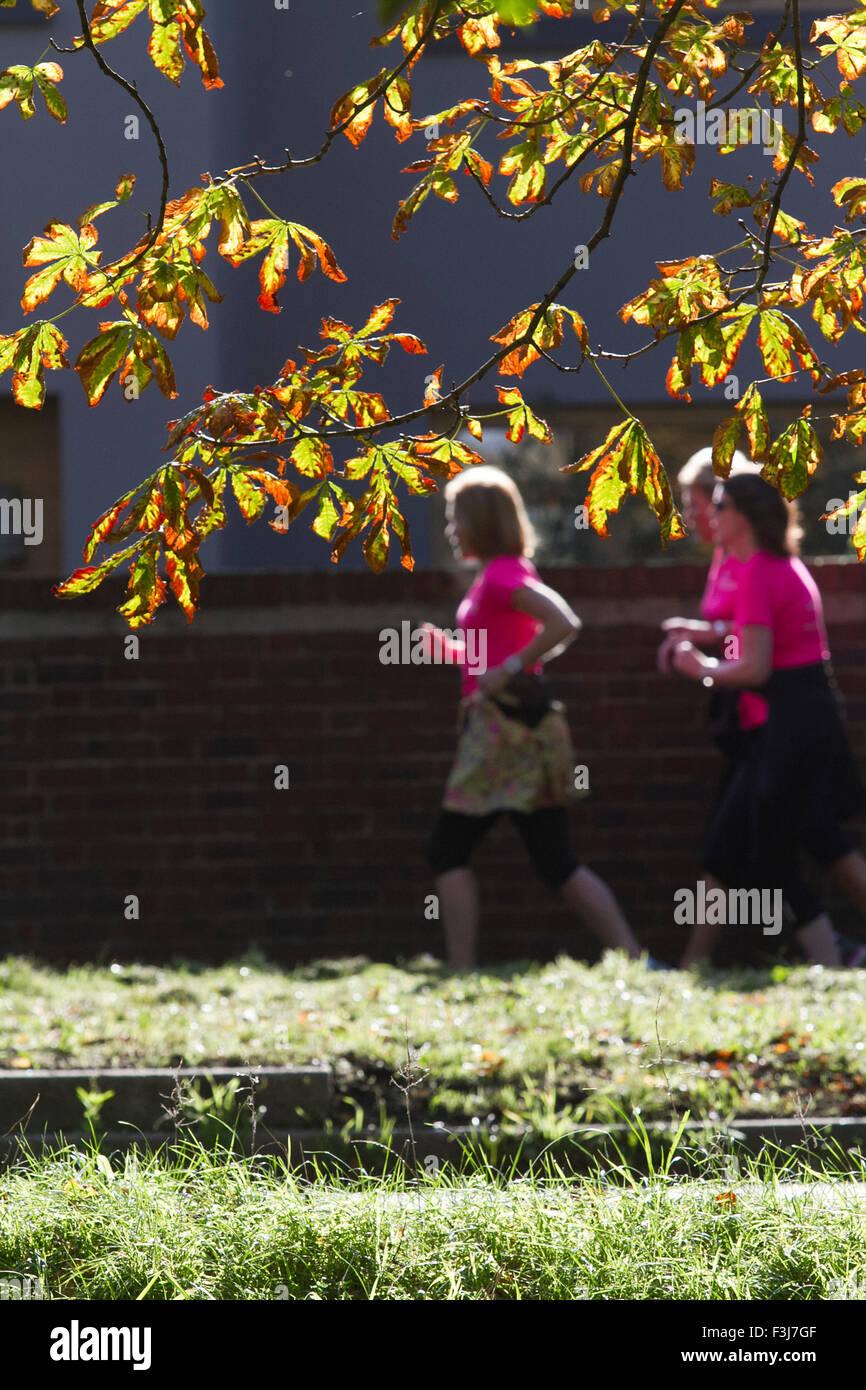 Wimbledon London, UK. 8. Oktober 2015. Jogger auf Wimbledon gemeinsame Vergangenheit farbige Blätter mit der Ankunft Stockfoto