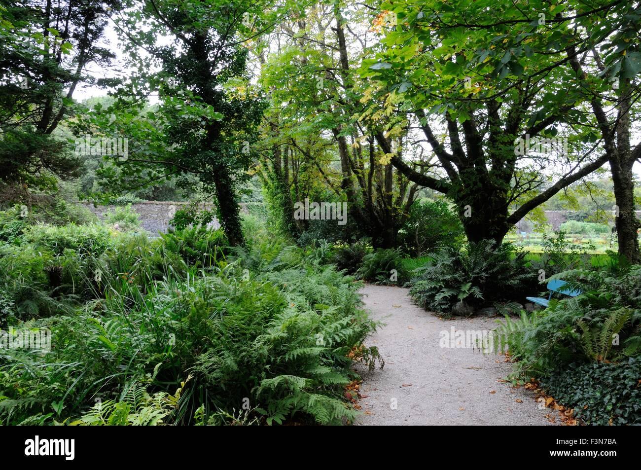 Viktorianische Farn Garten Spaziergang Am Kylemore Abbey Connemara