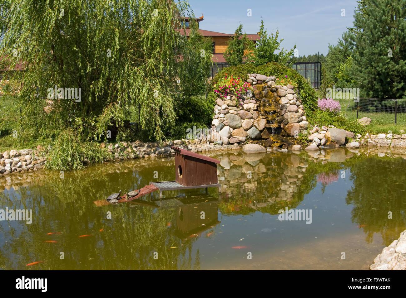 Beispiel der landschaftsgestaltung f r garten des for Fische fur kleinen gartenteich