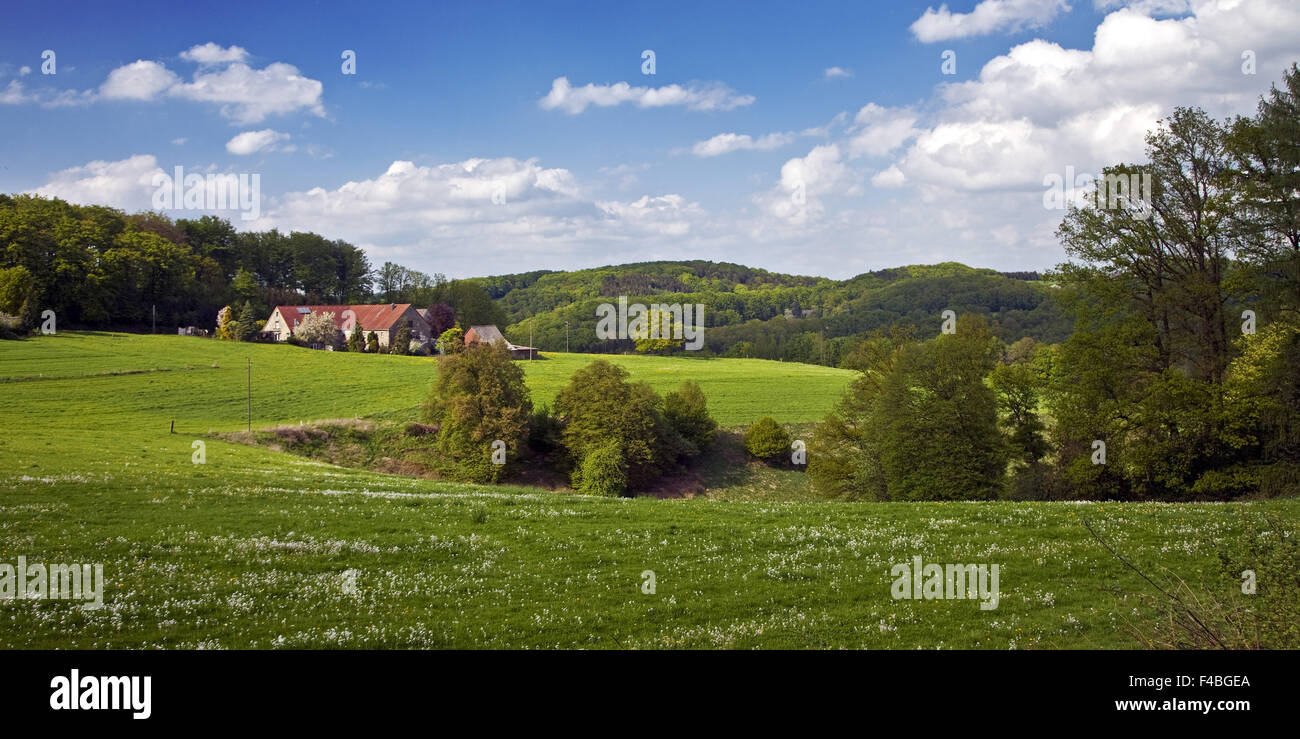 Landschaft mit Bauernhof, Sprockhoevel, Deutschland. Stockbild
