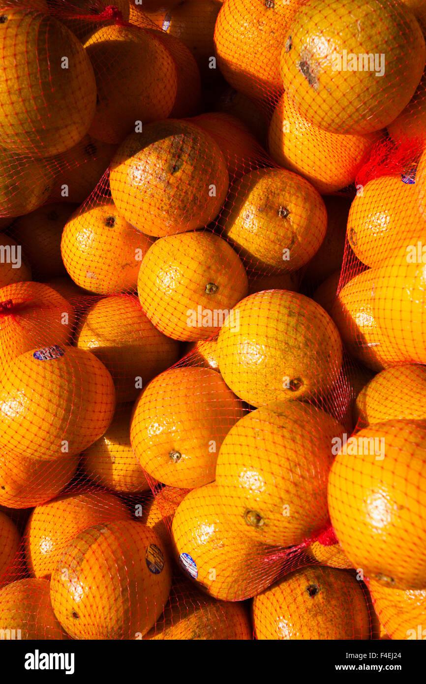 USA, Florida, Homestead, Florida Orangen. Stockbild