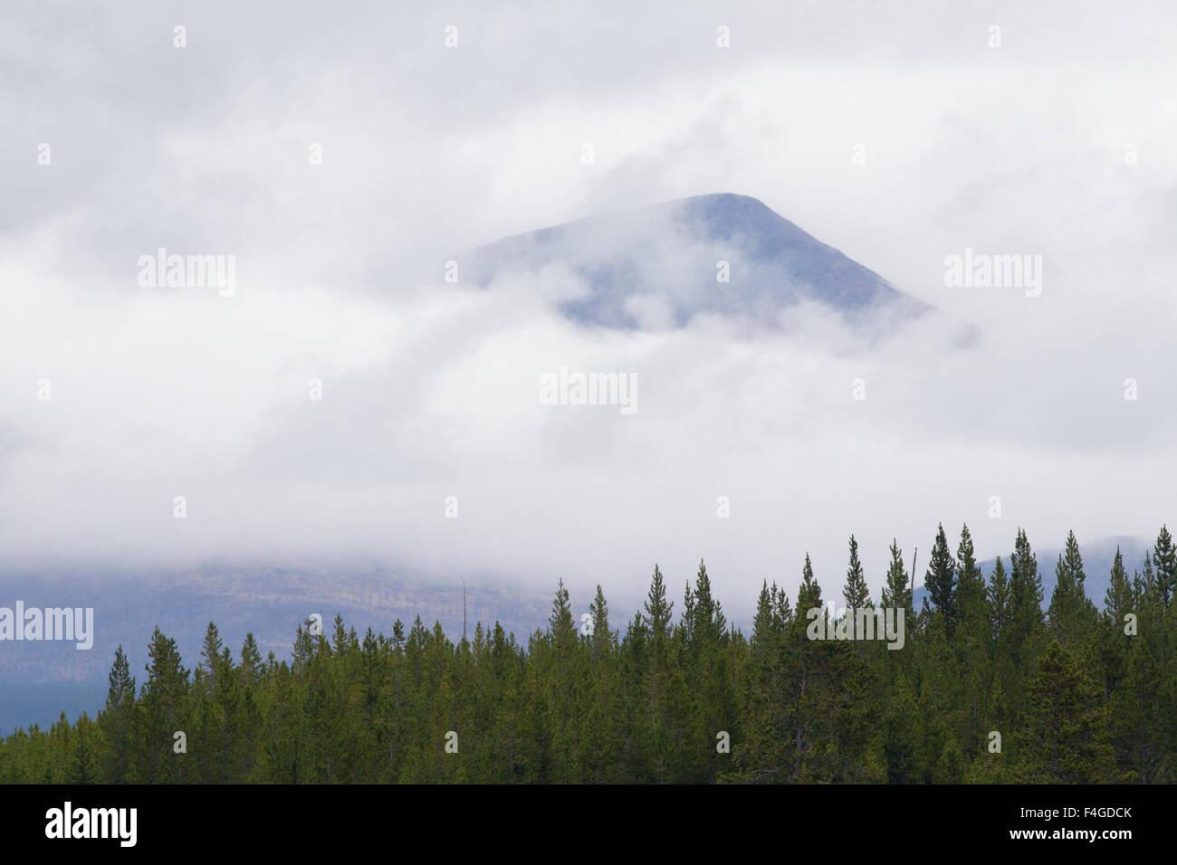 Teton Mountain Top durch Nebel Stockbild