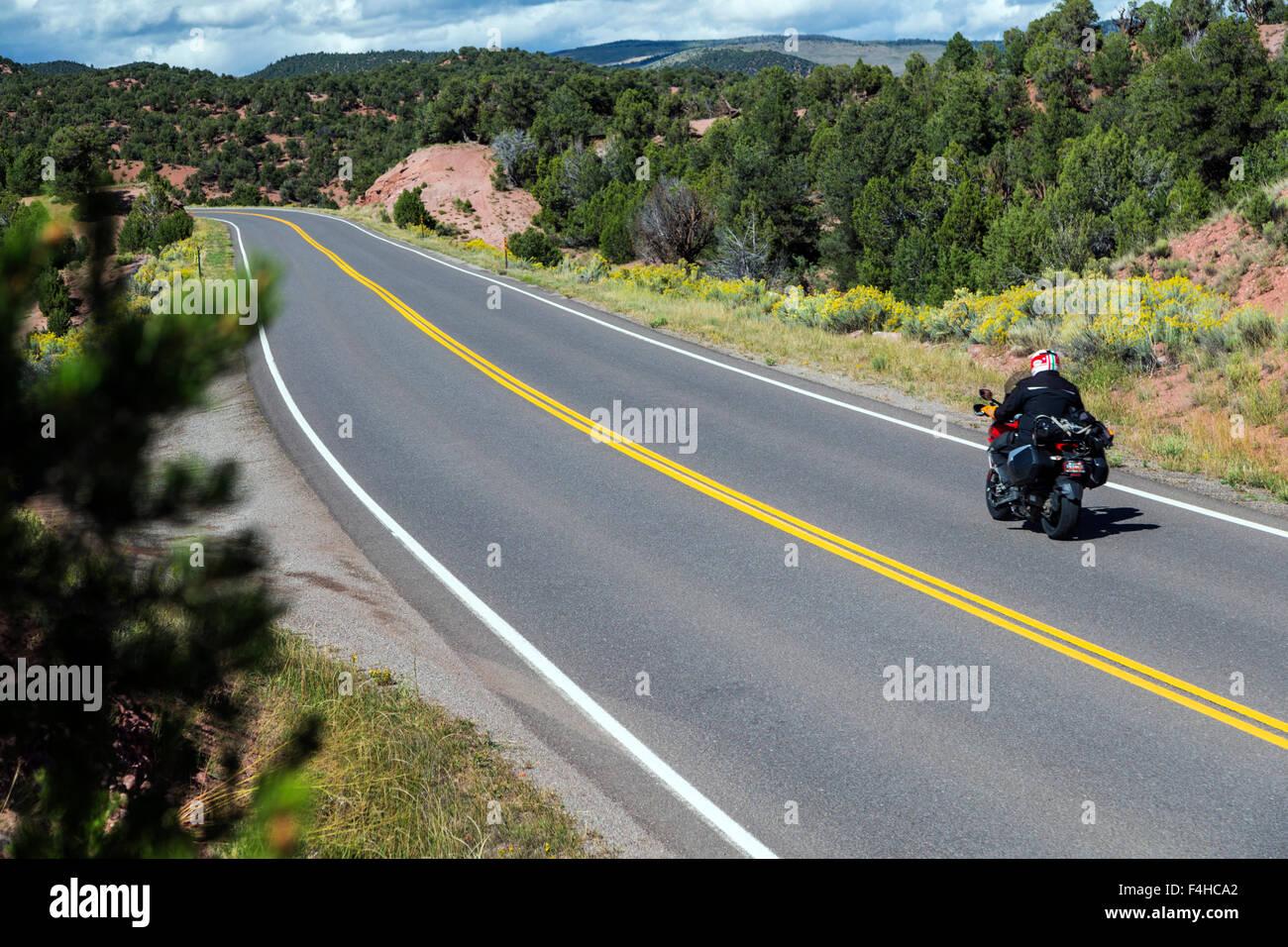 Motorradfahrer auf asphaltierten Straße; Nord zentral Colorado; USA Stockbild