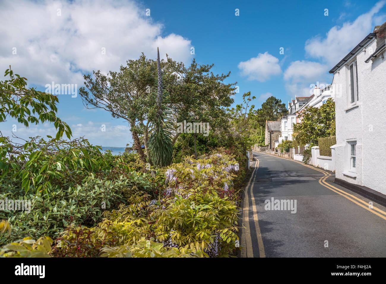 Malerische Küstenstraße im Fischerdorf Mawes, Cornwall, England, Vereinigtes Königreich | Malerische Stockbild