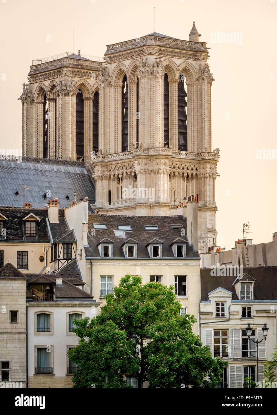 Notre Dame de Paris Kathedrale Türme und Île De La Cité im frühen Sommer Morgenlicht, Paris, Stockbild