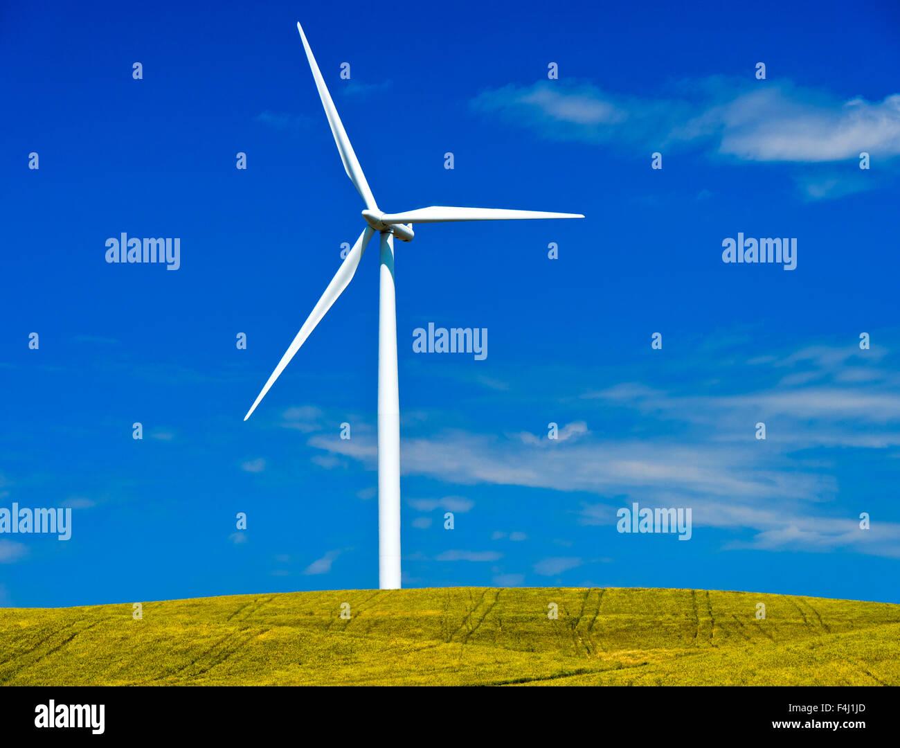 Windkraftanlage in der Nähe von Jerez De La Frontera, Andalusien, Spanien Stockbild
