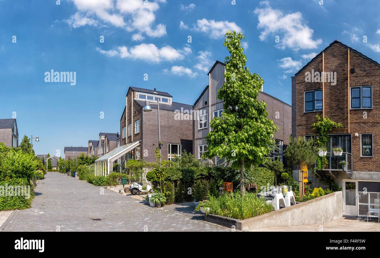 Niederlande, Holland, Europa, Dorf, Sommer, Garten, moderne, Häuser ...