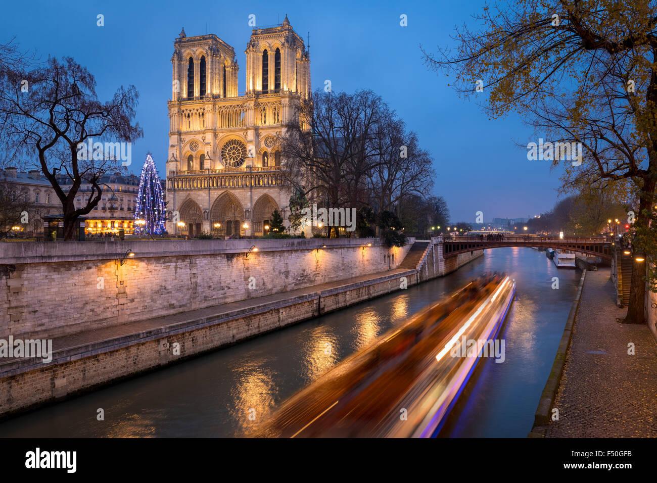 Kathedrale Notre Dame de Paris und Weihnachtsbaum Beleuchtung abends mit dem Seineufer, Ile De La Cite, Paris, Frankreich Stockfoto