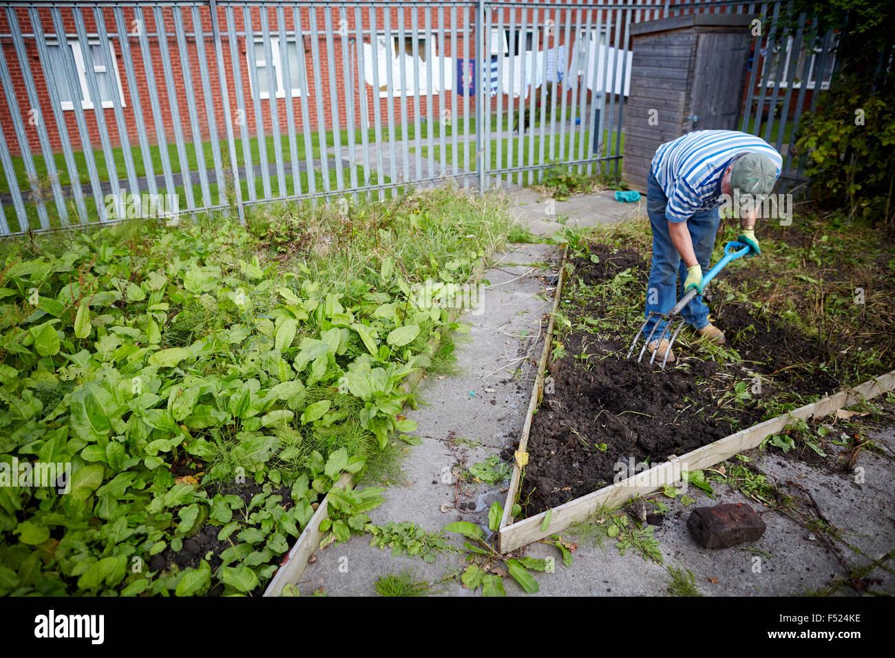Affinität Sutton sonnigen Braue Lounge in Gorton resident arbeiten auf seiner Zuteilung Raum Gartenarbeit arbeiten Stockbild