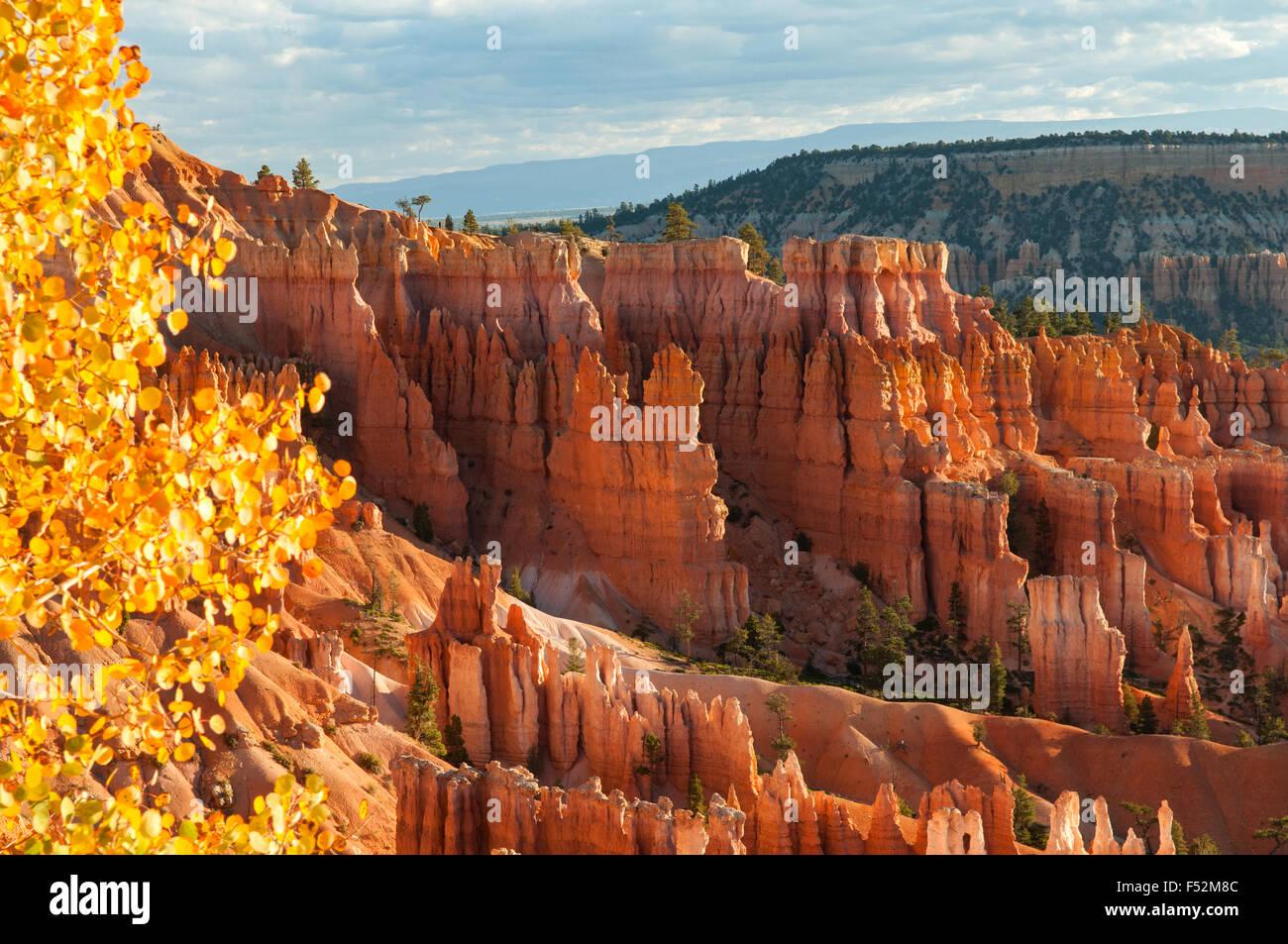 Blick auf Navajo Trail, Bryce Canyon, Utah, USA Stockbild