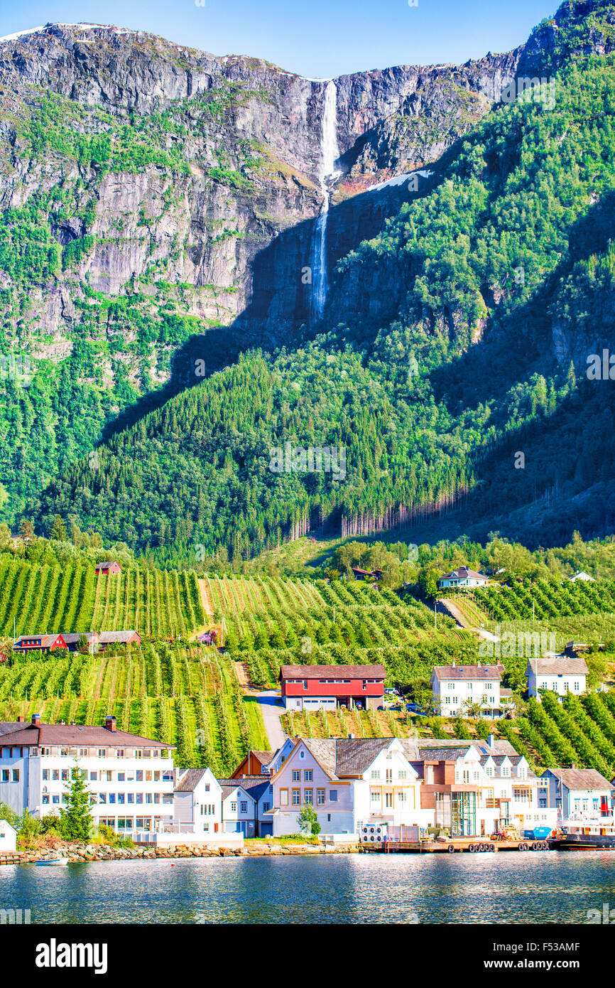 Wiesen und Dorf am Hardanger Fjord. Norwegen-Ufer mit Blick. Norwegen. Stockbild