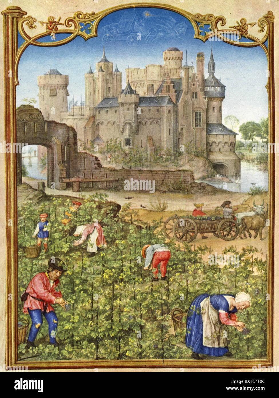 Mittelalterlichen Darstellungen der Monate des Jahres: September Stockfoto