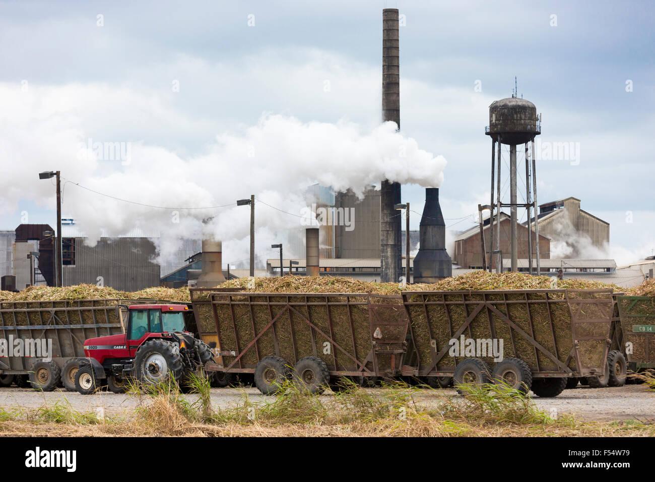 Zuckerrohr-Produktionsfabrik St Mary Zucker Cooperative Sugar Mill Verarbeitung roher Zucker in Jeanerette, Louisiana, Stockbild