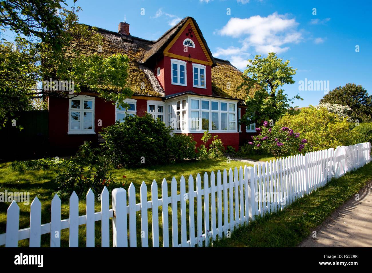 Deu Deutschland Schleswig Holstein Nordsee Insel Amrum