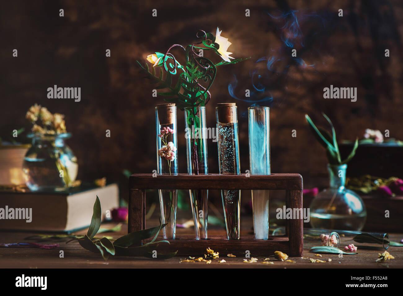Alchemistische Blume. Stand mit vier Röhren und glühende Blume der Farn Stockbild