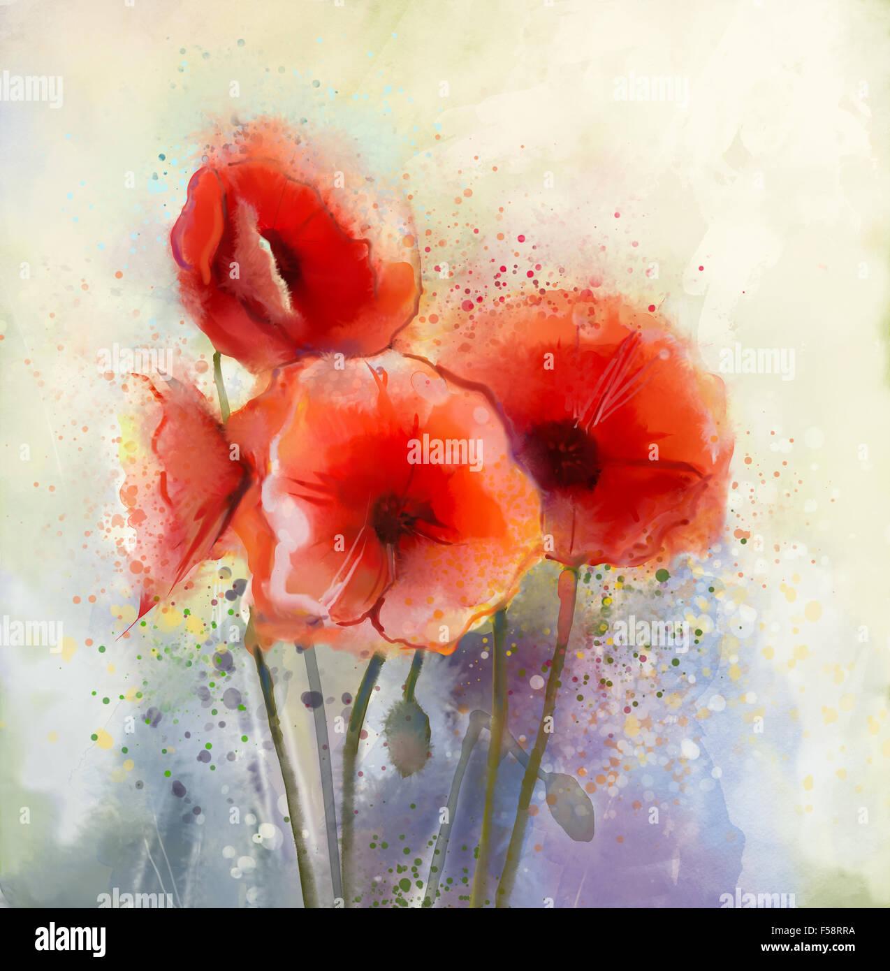 Wasser Farbe Rot Mohnblume Blumen Malen Blüten In Zarten Farbe Und