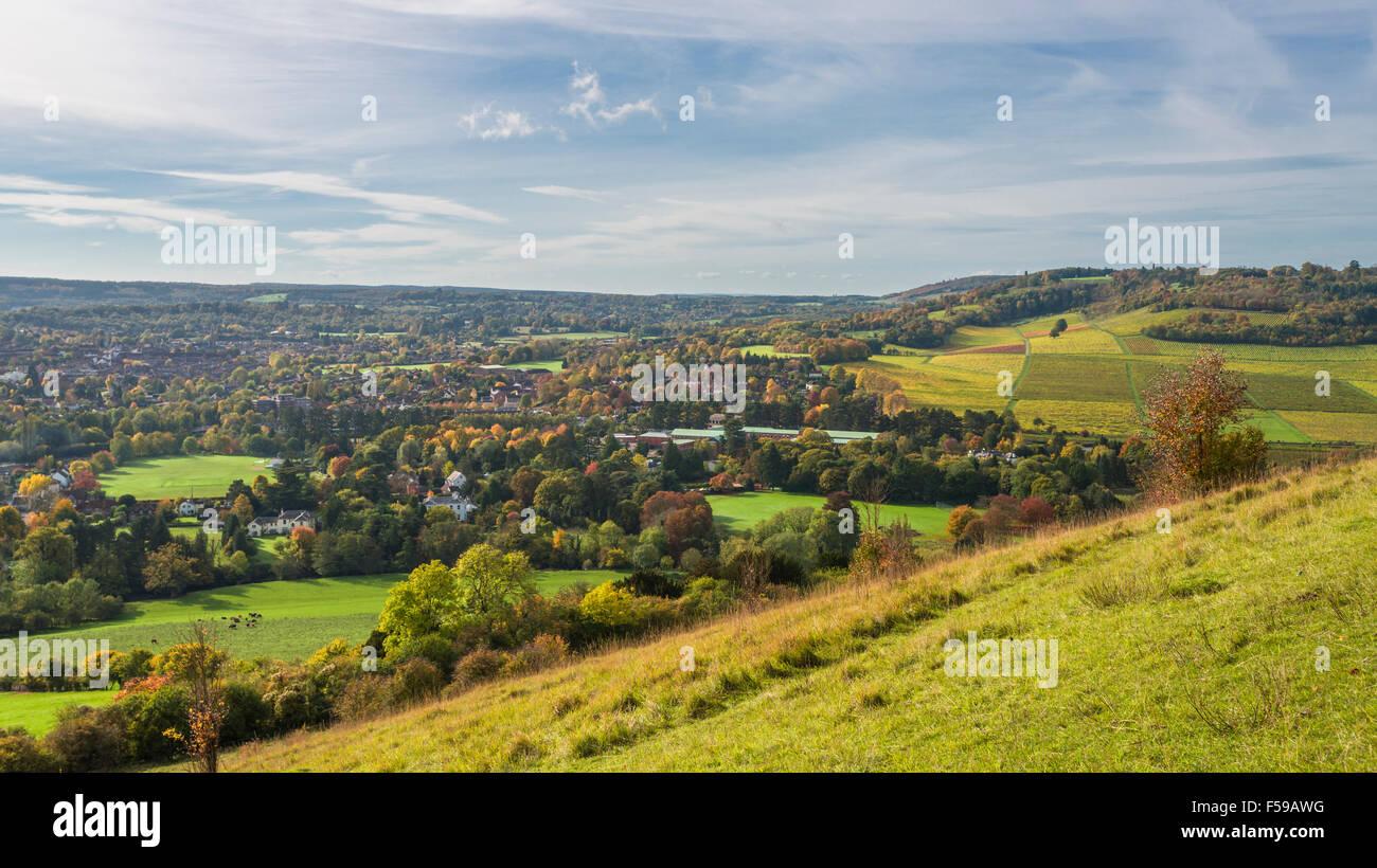 Ansicht der englischen Landschaft im Herbst Farben, North Downs in Surrey Stockbild